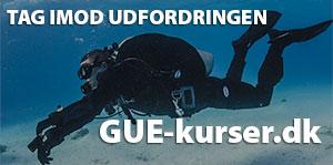 GUE_kurser_300px.jpg